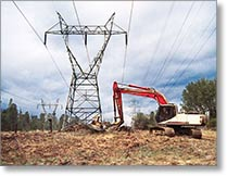 Clearing vegetation under a 100kV transmission line